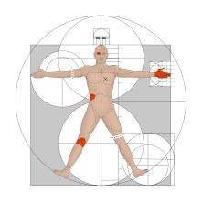 vitruvian_man_geometry