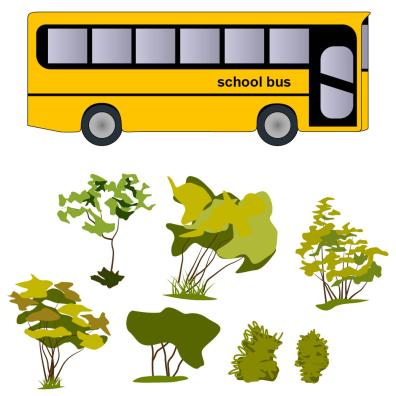 school bus and assorted vegetation
